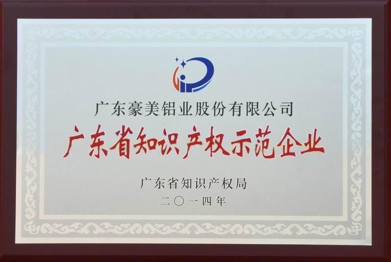 广东省知识产权示范企业(2015)