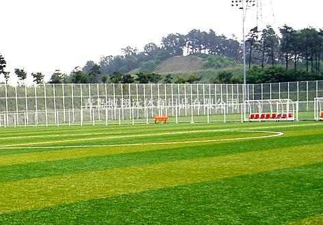 【人造草坪/人工草坪足球场】报价_图片_品牌-青岛博
