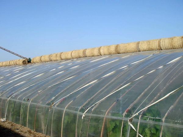 蔬菜大棚建设 高产量 蔬菜大棚 建设高清图片