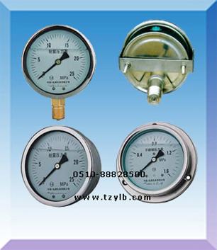 供应不锈钢壳耐振压力表