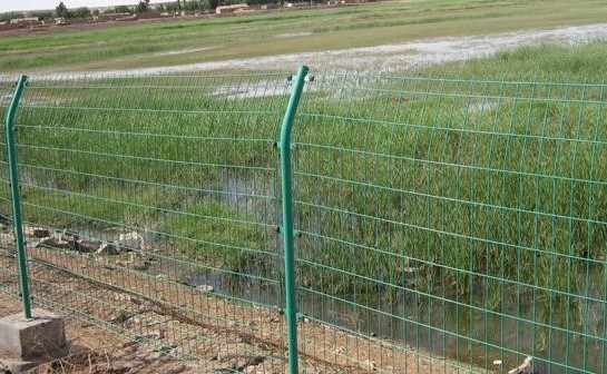 双边丝护栏网结构简单,用料少,便于远程运输,因而工程造价低;将围网底部与砖混墙筑为一体,有效克服了该网刚度不足的弱点,增强了防护性能。现以被用量大的客户普遍接受。 产品规格:  浸塑丝径3.8—6.0mm 网孔75 X 150mm 立柱 48X2.0mm 尺寸 3000-1800 外倾防攀角度30;附件:防雨帽,连接卡,防盗螺栓。 产品优点:   1.