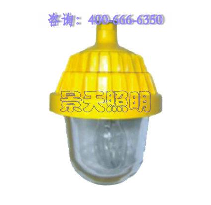 供应海洋王BPC8720防爆平台灯/BPC8720-J150