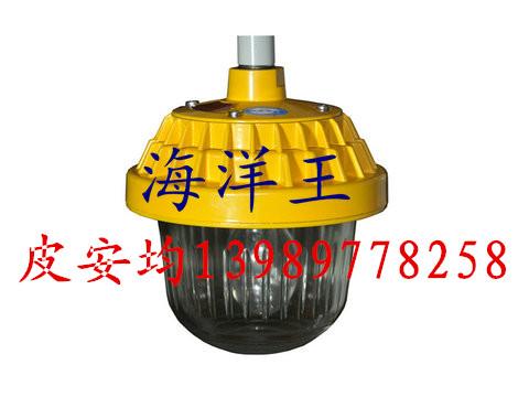 供应BPC8720防爆平台灯
