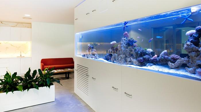 郑州玻璃隔断之鱼缸型隔断图片