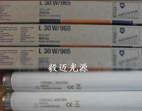 供应OSRAM L 30W/965 D6500光源