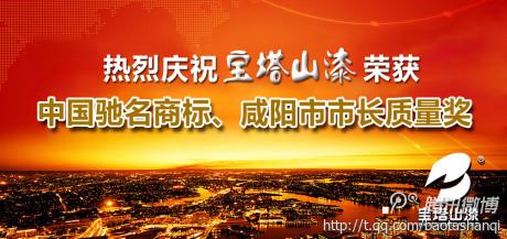 """热烈庆祝宝塔山漆喜获""""中国驰名商标"""""""