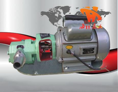 温州不锈钢防爆微型齿轮油泵WCB型