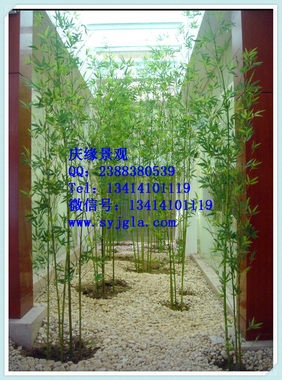广州仿真竹子厂家 基本信息 产品名称:仿真竹子 材料:竹竿,仿真竹叶 产品简介 仿真竹子是工程师模拟竹子的自然形态,采用高仿真环保材料设计制作而成的仿真植物产品,用来弥补竹子只能地区观赏的局限性。 仿真竹子通常采用璃钢树脂树杆结构,采用高性能环氧树脂和玻璃纤维缠绕成型,树杆内采用国标钢结构,树叶采用ABS塑料或PU等高性能防阻燃环保材料。耐腐蚀性能良好,耐老化耐高温防阻燃,更加环保,防紫外线 适用场合 酒店,公园,商业街,广场,河道,车站,礼堂,娱乐场所,生态园林,小区庭院,展览馆,超市,办公室,家庭等各