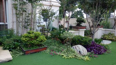 武汉别墅私家花园绿化护理图片