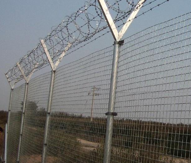 监狱刀片防护网哪家质量好-中禹刀片刺网厂