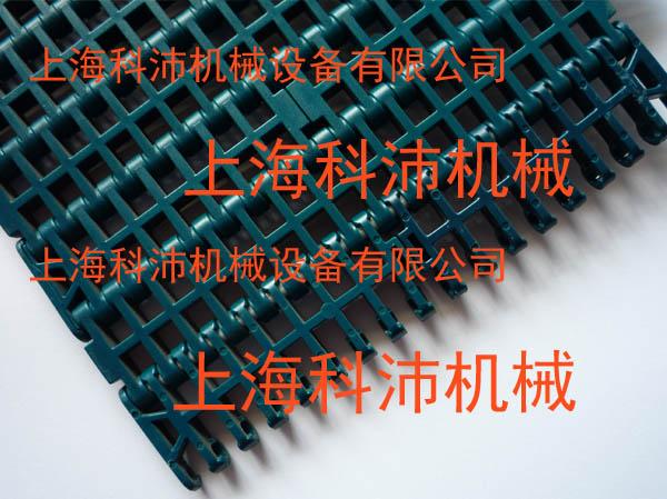 供应1000平格塑料网带厂家