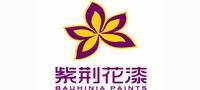 紫荆花涂料集团