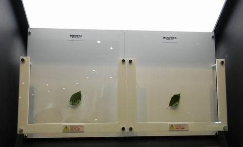 反射率0.08% 日本展示神奇的隐形玻璃