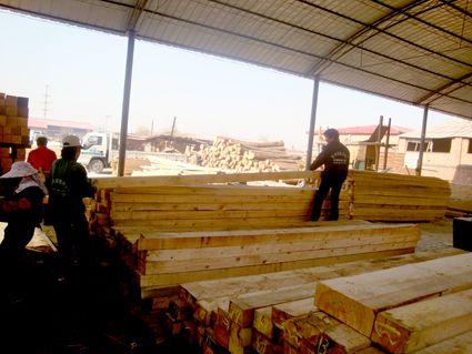 卉峰园林景观建材防腐木材、塑木产品图片展示