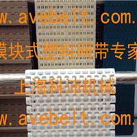 OPB模块塑料网带报价