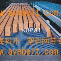 OPB模组塑料网带报价