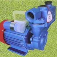 玉环康升泵业有限公司