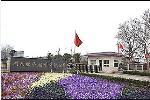 河南盛荣特种钢业有限公司