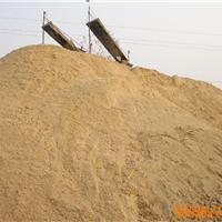 供应志诚水洗沙