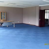供应方块地毯|防污方块地毯|方块地毯厂家