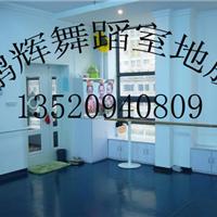 供应舞蹈室专用地胶多少钱一平米