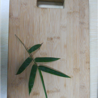 竹菜板  实竹砧板 水果竹菜板板  寿司竹菜板