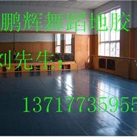 供应地胶 舞蹈室地板 舞蹈房专用地板 地胶多少钱一平