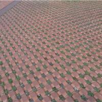 厂家直销草坪砖 井字砖 植草砖 四色草坪砖