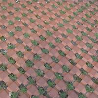 厂家直销草坪砖井字砖植草砖 陶土砖