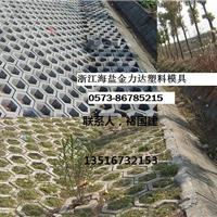 供应四川雅安护坡工程六棱块砖塑模广元模具