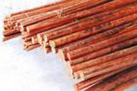 供应C12100进口环保铜合金棒材板材带材管材批发价格