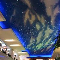 供应光纤满天星 光纤星空 图片