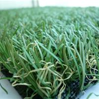 供应人造草坪、人造草皮、人造草、草坪