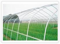 供应新型大棚骨架 蔬菜大棚骨架 养殖大棚骨架