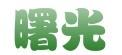 肥乡县曙光苗木园艺有限公司