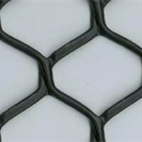供应土工网、塑料土工网-大公司,好产品