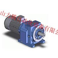 供应意大利摩多利减速机 NMRV040
