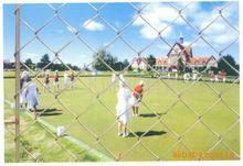 供应球场围栏网、球场围网、球场防护网