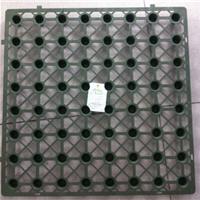 供应蓄排水板(滤水板)
