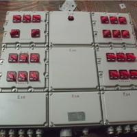 ��ӦBXX51-4/K100����������