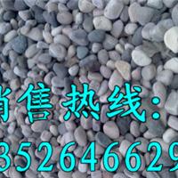 供应路面铺设专用五颜六色天然鹅卵石厂家批发价格