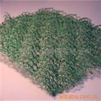供应梅州三维网垫形势分析,三维土工网垫厂家