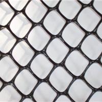 供应CE131土工网价格,塑料土工网专业厂家