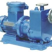 供应上海ZCQ不锈钢磁力驱动泵(配防爆电机)