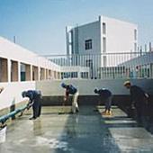 供应JS弹性防水涂料