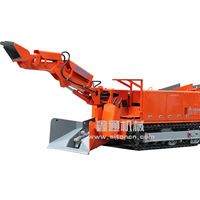 LWLX-60/30L江西鑫通履带式扒渣机/扒挖机