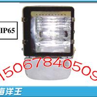 海洋王NFC9140节能型广场灯,NFC9140广场灯