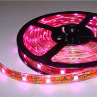 3528LED软灯条 LED灯带批发