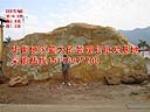 供应大型景观石_大型景观石产地_大型黄蜡石
