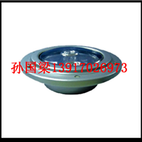 供应【NFC9171S】固态免维护顶灯NFC9171